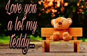 images for teddy day