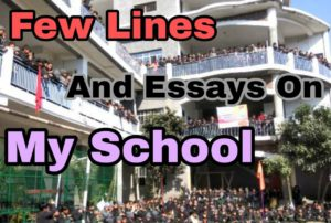 essay in hindi on my school